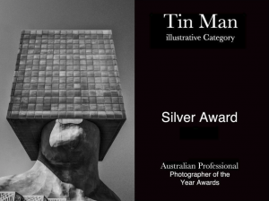 Award Image - Fine Angle Photography